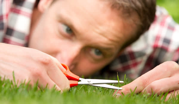Man evening out grass with scissors.