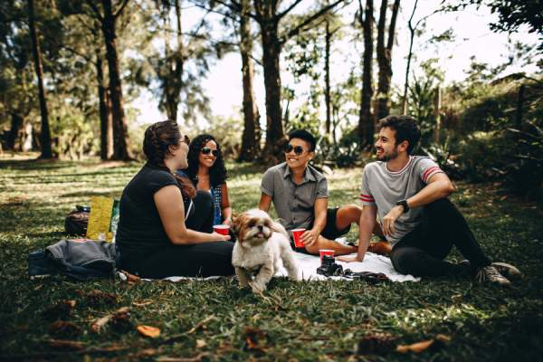 group of friends picnicking