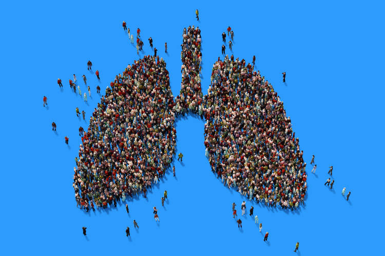 lungs people