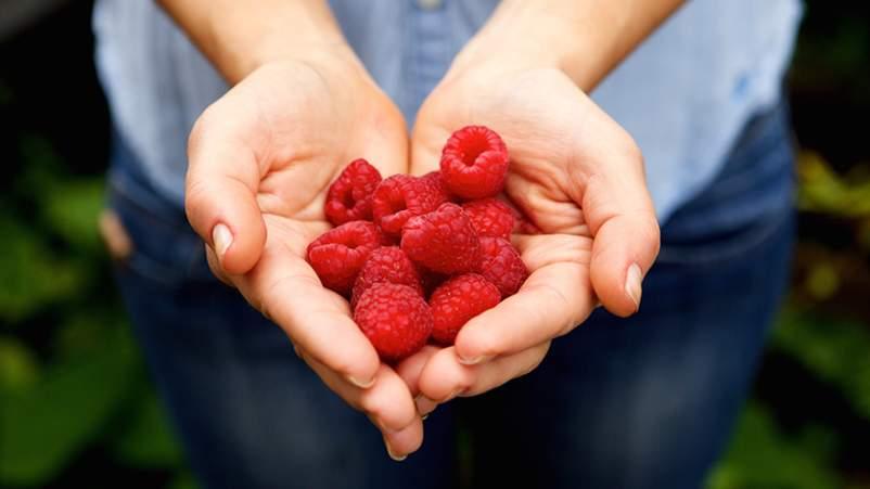 Handful of rapsberries.