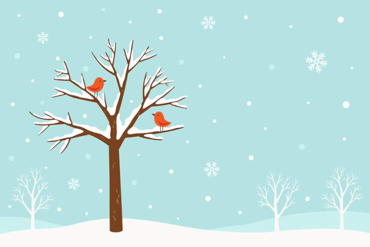 Illustration of cold weather, snowy with red birds in tree