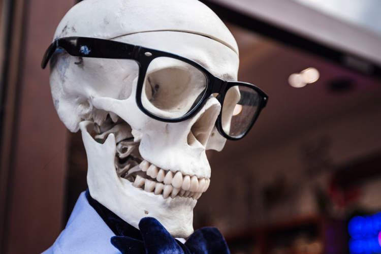 human skull wearing eyeglasses