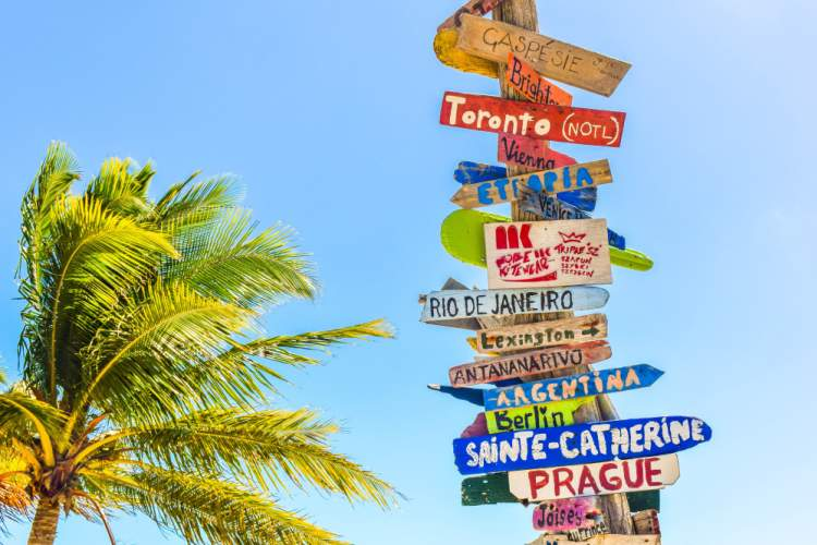 sign post showing many locations next to palm tree