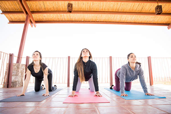 Women doing cat-cow pose on yoga mats.