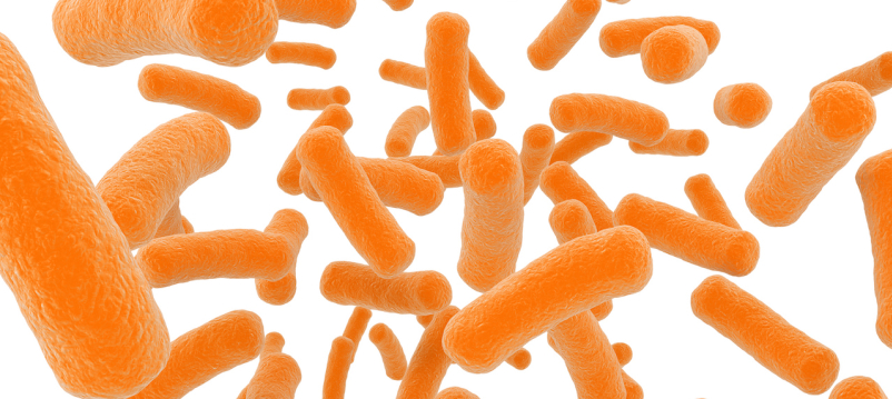 IBD Raises Risk of Getting C. Diff Again
