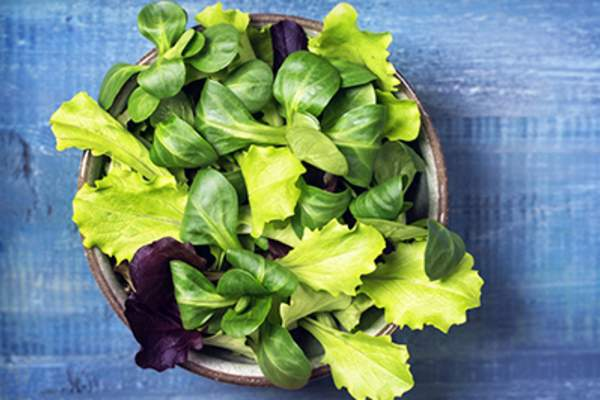 Mixed green salad leaves in a bowl.