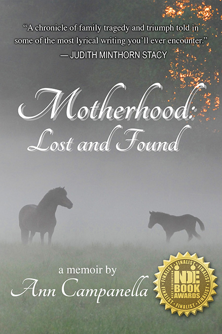 Cover of Motherhood Lost and Found by Ann Campanella.
