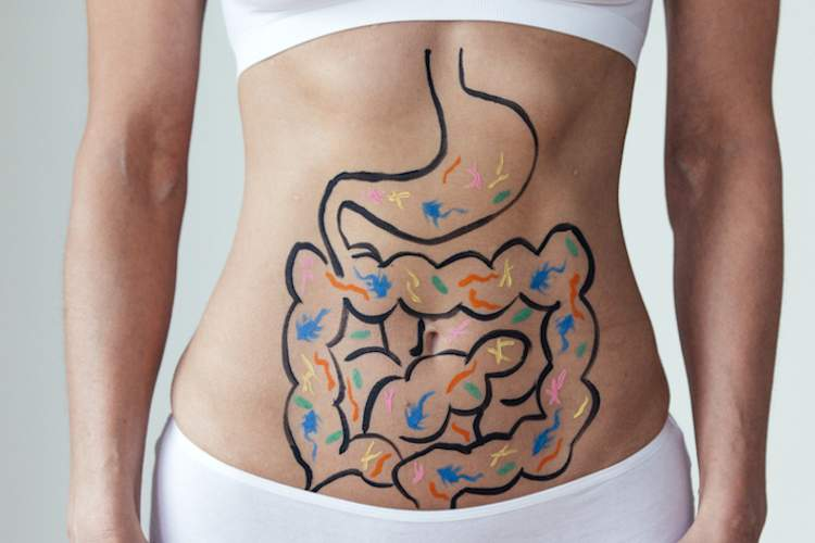 Digestive track drawn on woman's stomach.