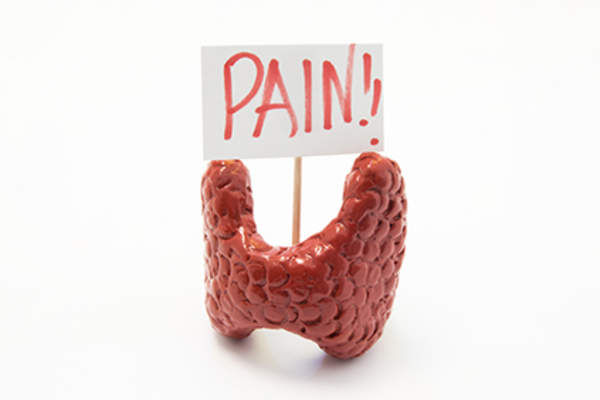 Model of thyroid gland with pain placard.