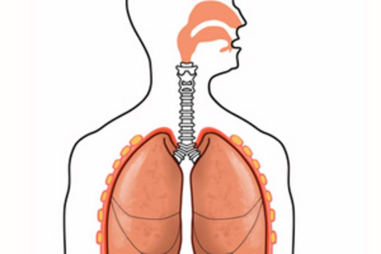 The Stages of COPD