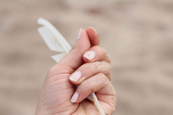 Close up of a hand holding a feather