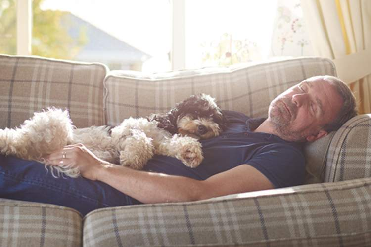 Man with dog on chest asleep on couch.
