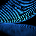 Thumb-digital-fingerprint