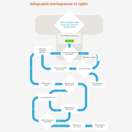 infographic-infrigement of rights-thumbnail
