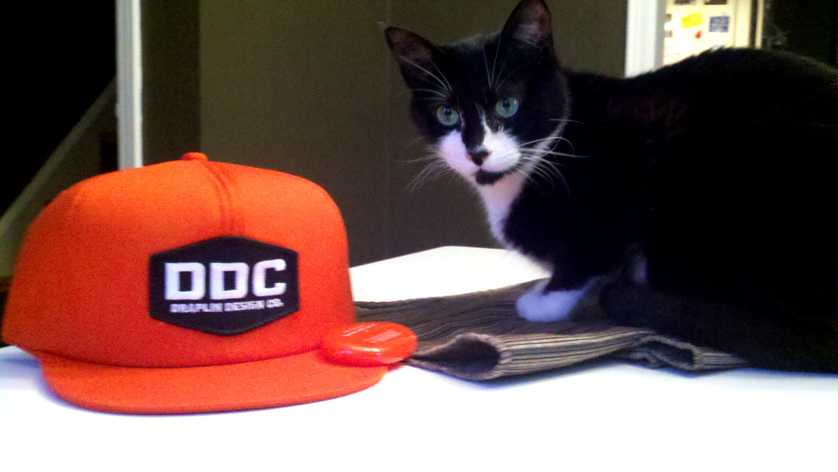 Schmerv vs DDC hat