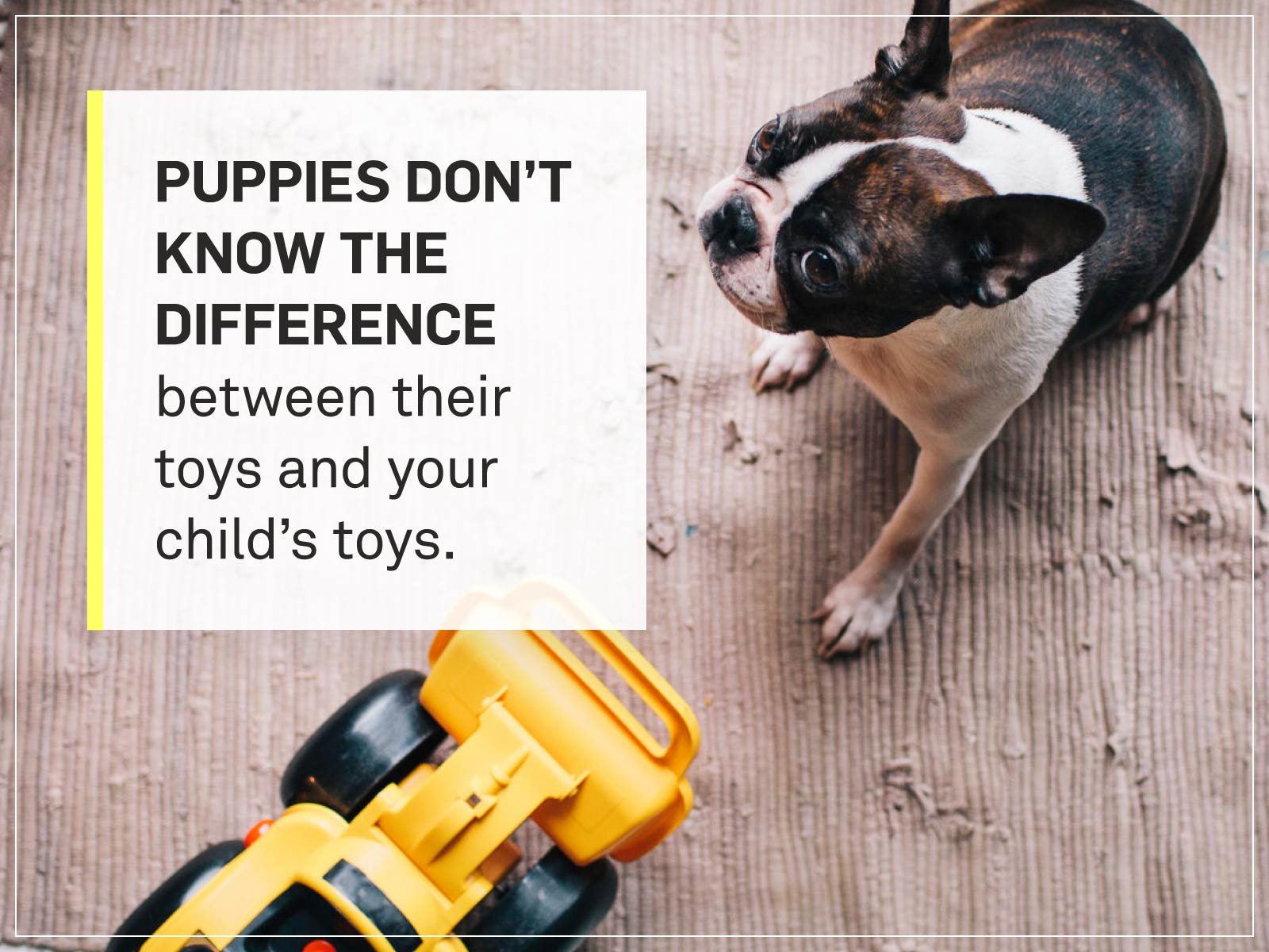 new puppy checklist 15-childrens-toys