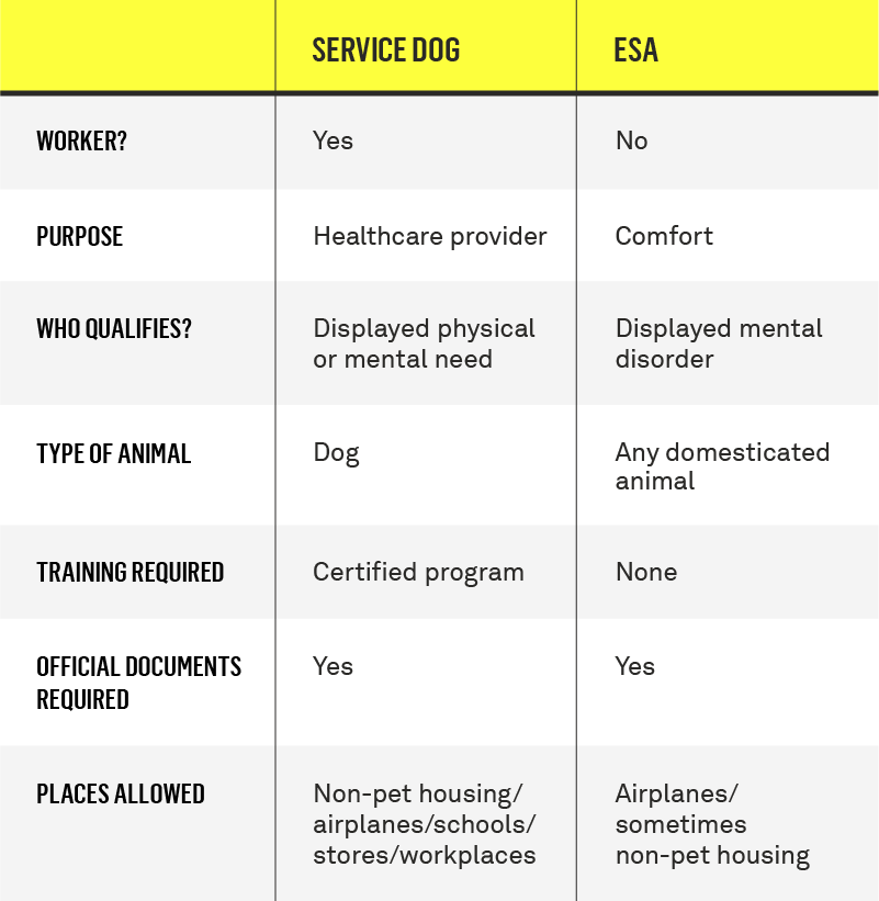 service dog vs emotional support animal