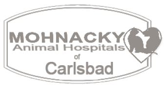 Mohnacky Animal Hospitals of Carlsbad