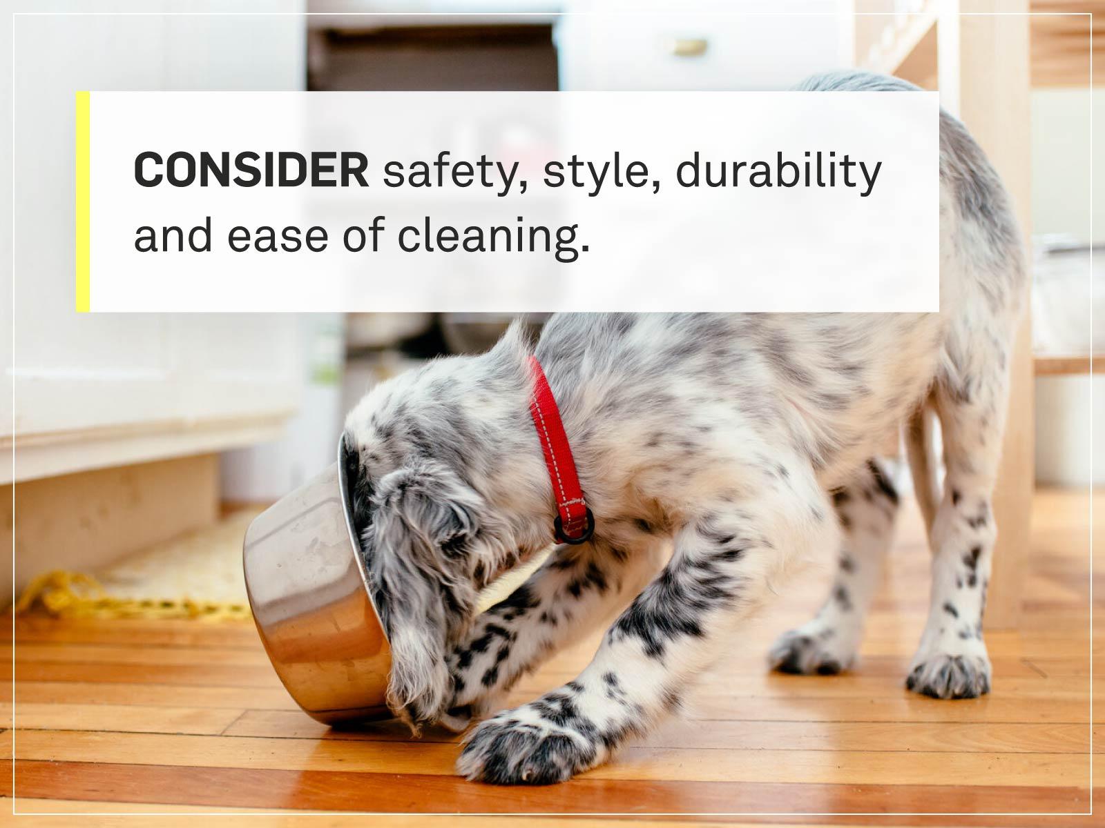 new puppy checklist 2-food-bowl