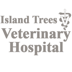 Island Trees Veterinary Hospital