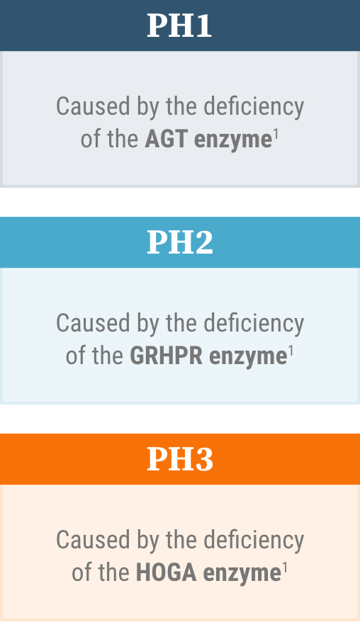 There are 3 known genetically defined types of PH: PH1, PH2, and PH3. All known types are caused by enzyme deficiencies.
