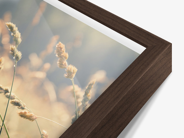 Design photo prints in showcase frames