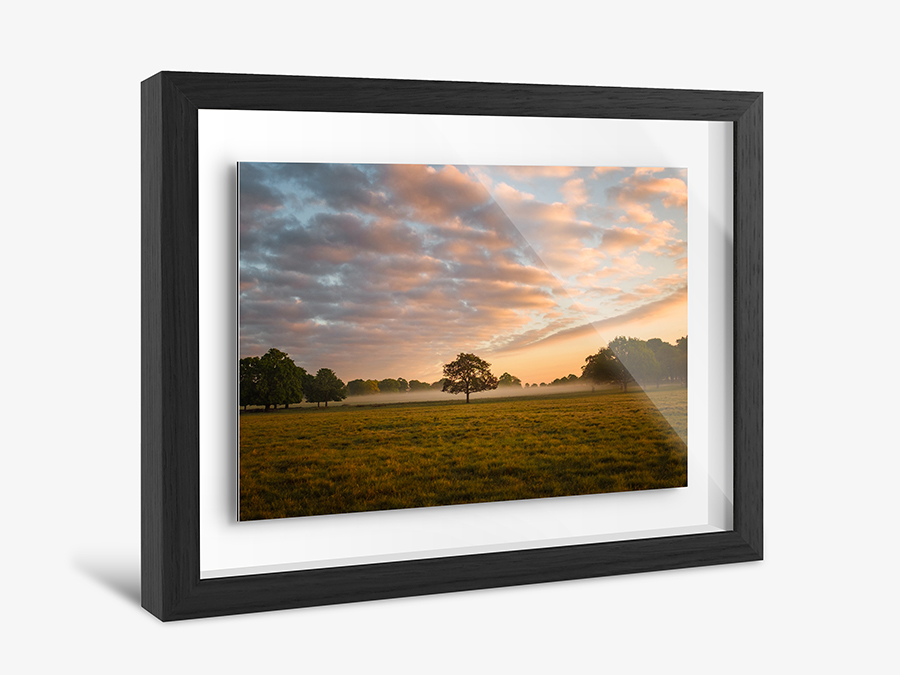create photo in Shadow Box Frame