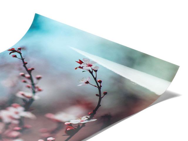 Acrylic Photo Print - print pictures on glass