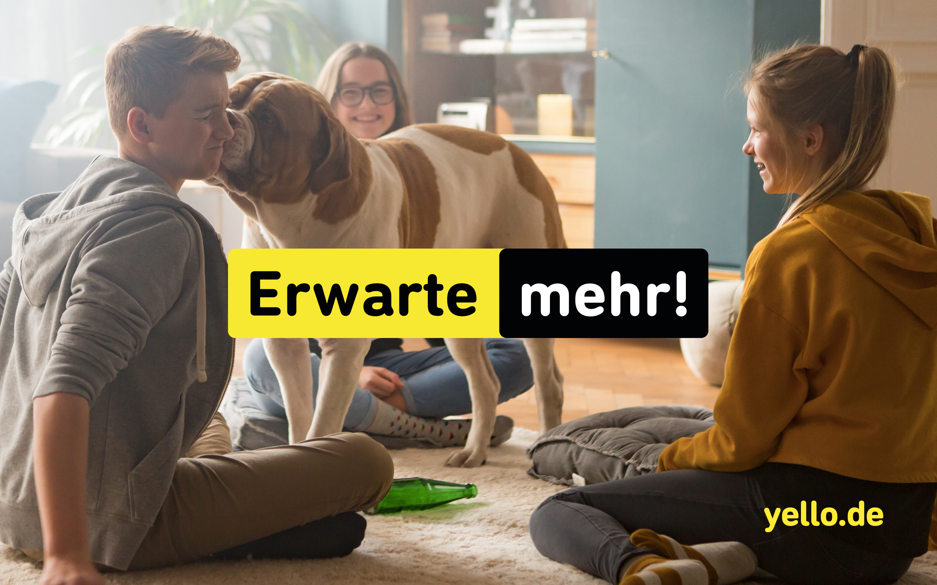 Yello bricht alle Erwartungen.
