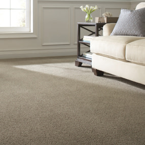 Carpet Online Check Out Home Depot S