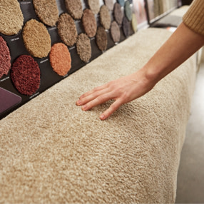All About Carpet