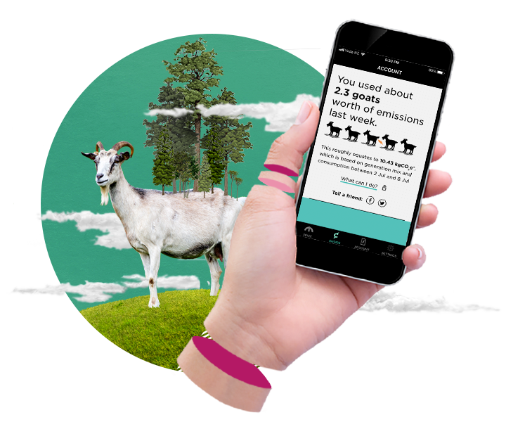 Choice by Flick - Real time carbon emissions tracking