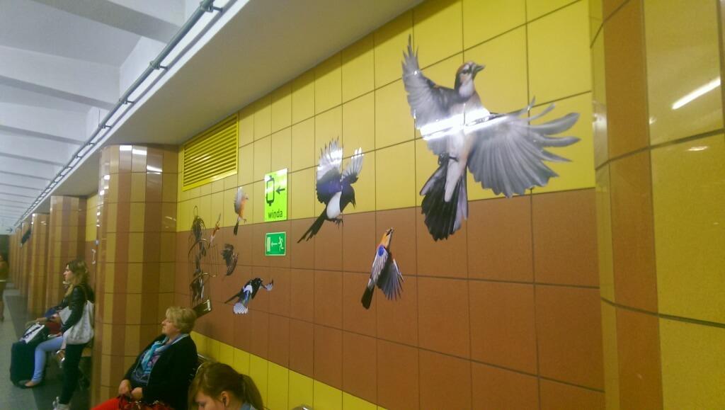 Birds drawn on a wall