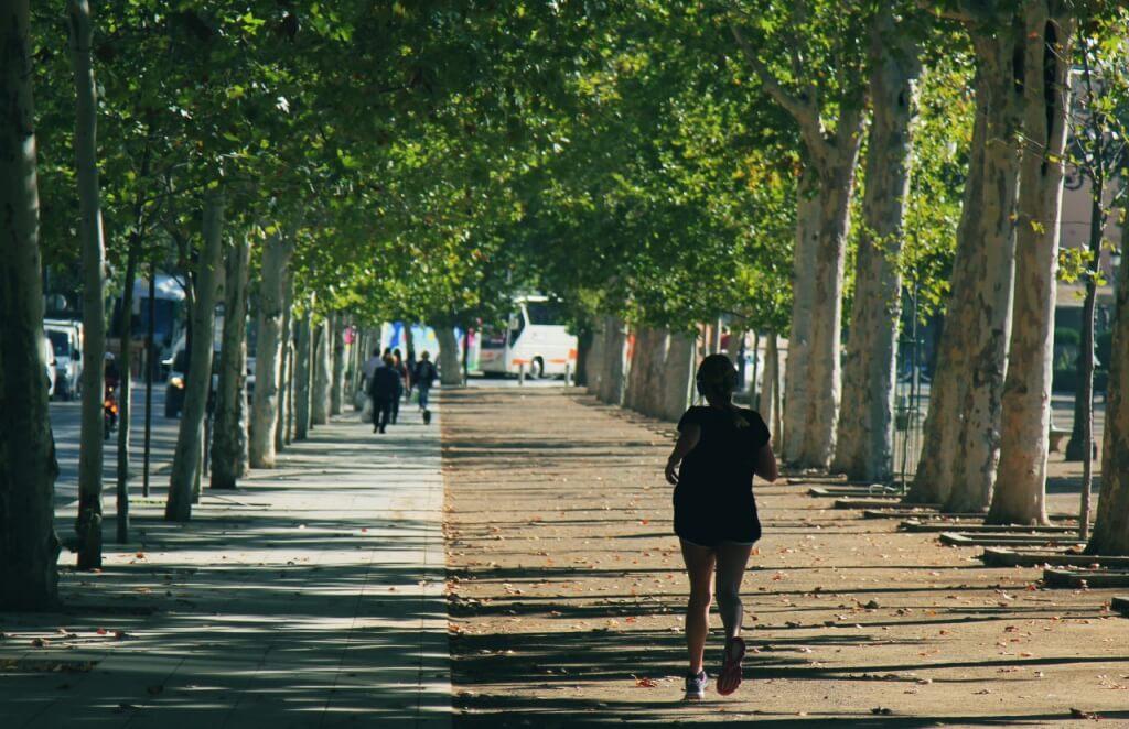 Running in a sunny park