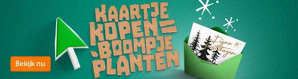 Blogbanner-NL