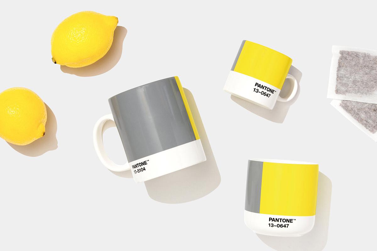 featured pantonekleur-2021-5