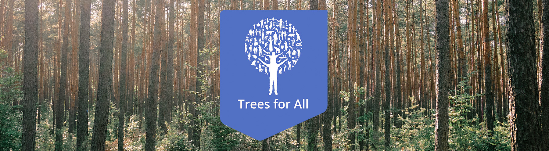 trees for all beeld