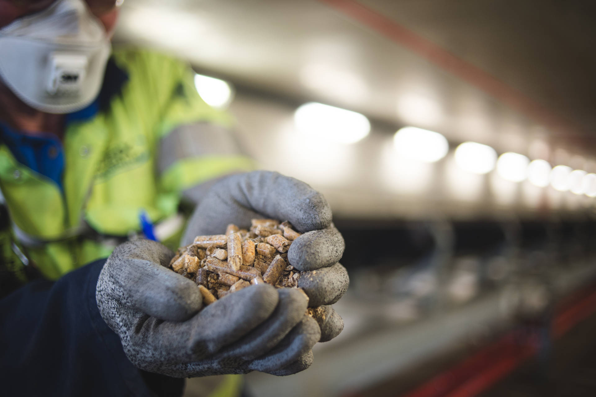 How biomass is helping us along the way to a zero-carbon future - Hero Image