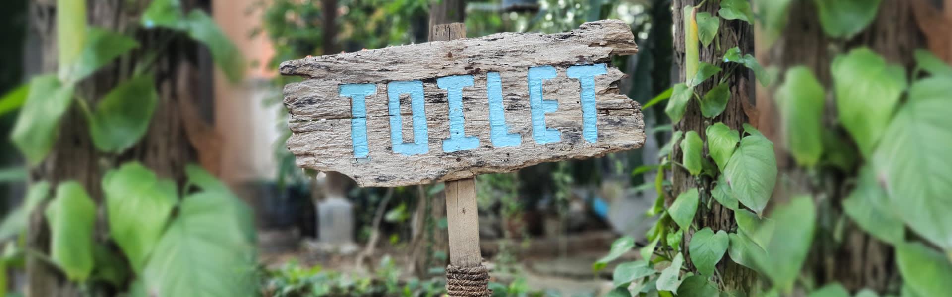 toilet-slim
