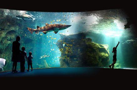 ® Aquarium La Rochelle