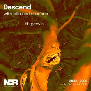 Descend feat. genvin