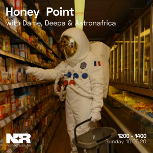 Honey Point feat. Astronafrica