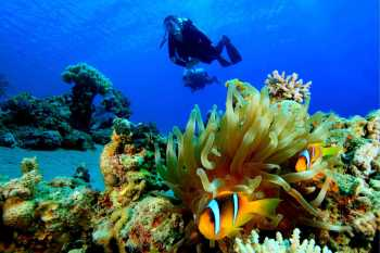 Red Sea - Hurghada