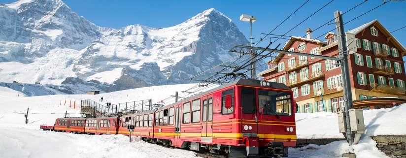 Swiss Alps: Free Day