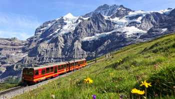 Swiss Alps: Free Day
