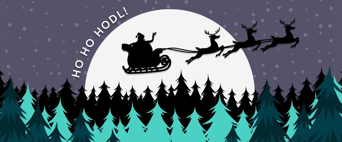 ho-ho-hodl