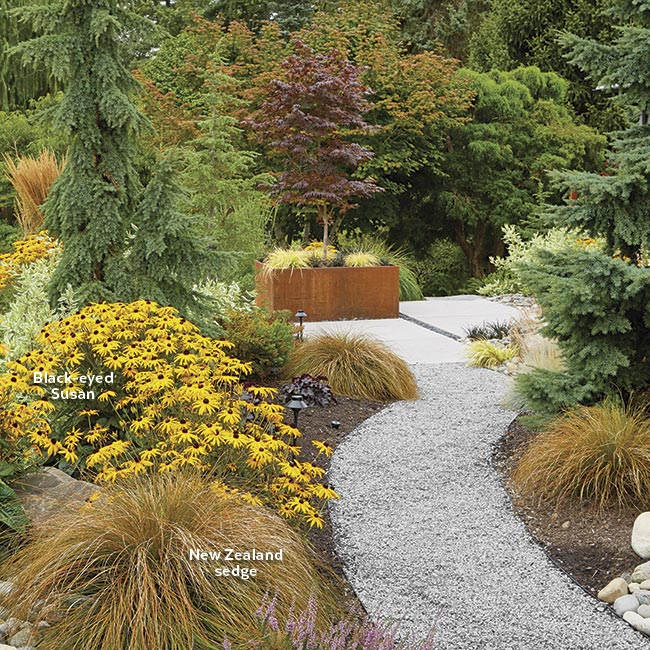 low-maintenance-plants-along-path: Repeating the New Zealand sedge along the path pulls you along the walkway towards the backyard and provides a cohesive look.