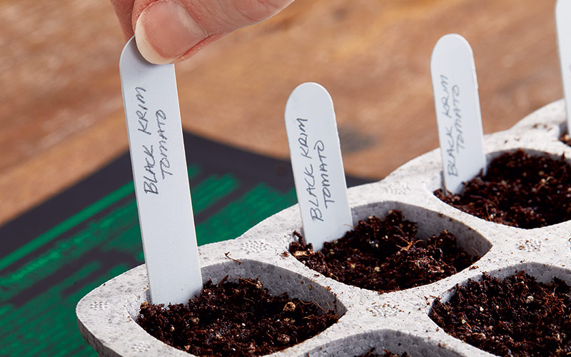 starting-seeds-indoors-labeling-seedlings