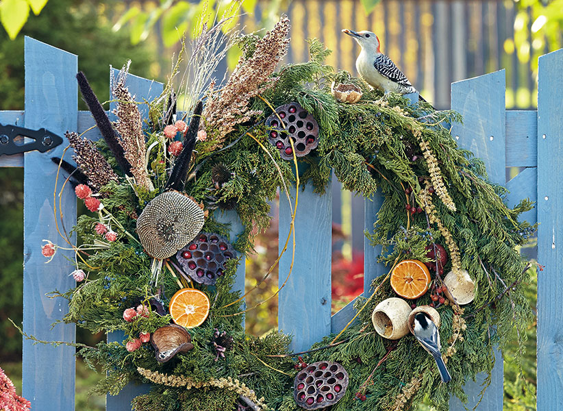 bird-feeding-wreath-lead: A red-bellied woodpecker and a white-breasted nuthatch have each found something to enjoy on this DIY bird feeder wreath.
