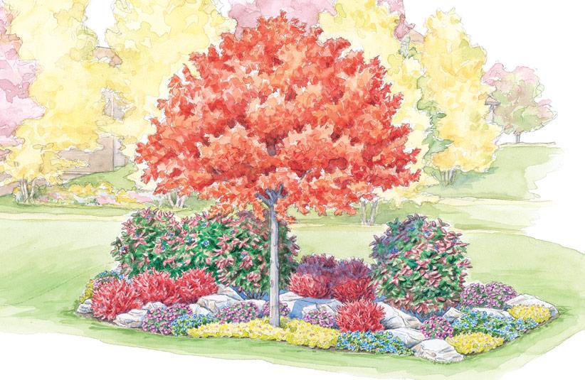 Fall Garden Showoffs Garden Gate